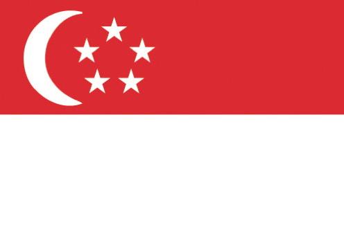 Drapeau Singapour - Singapore Flag
