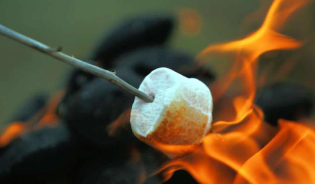 camping chamallow marshmallow au feu de bois