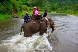 Voyage a Laos