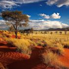 Paysage desert Namibie